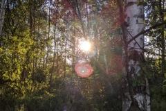 Abendsonne von DWORZA aus