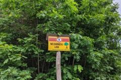 Wald nebenan